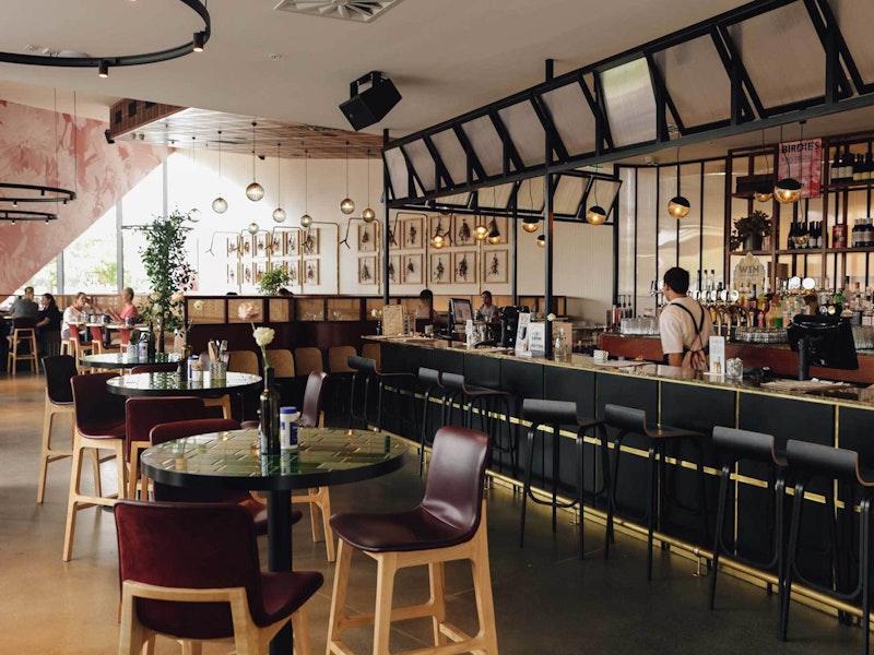 Joylab Birdies Bar