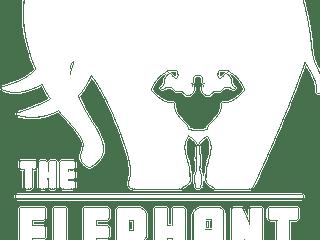 TEW Logo Stacked White