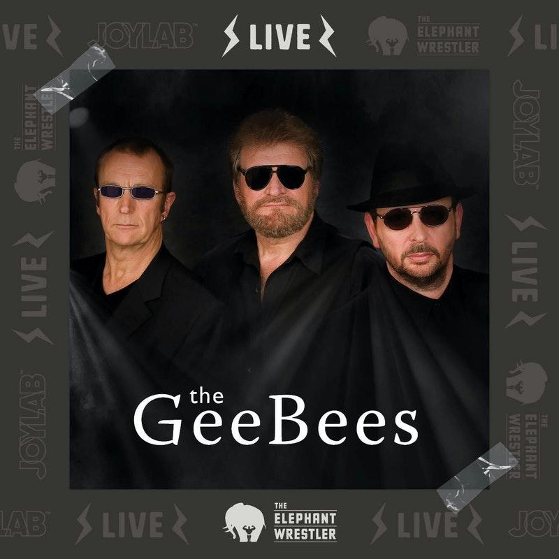 2106 TEW Gee Bees Tribute 1333x1333