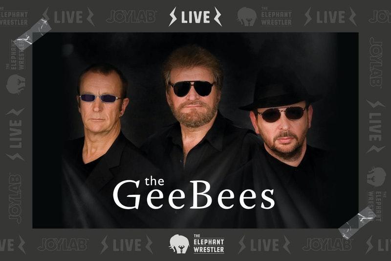 2106 TEW Gee Bees Tribute 2000x1333