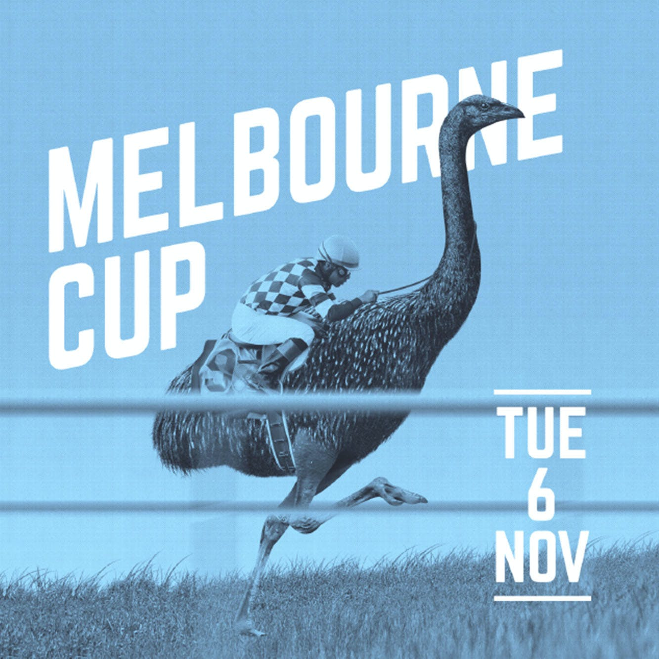 The Flying Moa Melbourne Cup