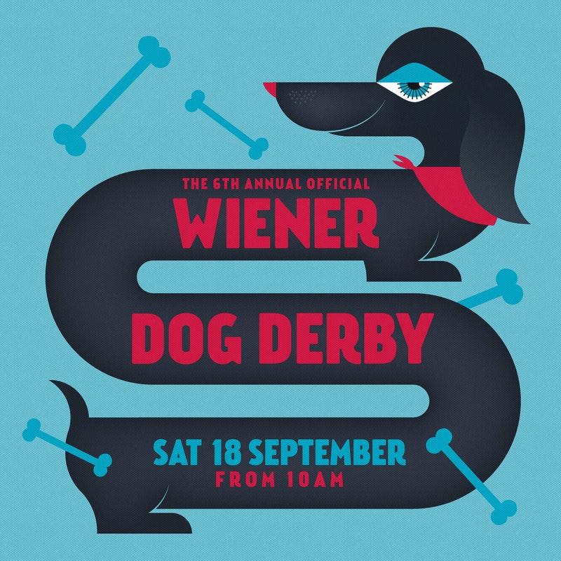 2108 TFM Wiener Dog Derby1333x1333px Low Res